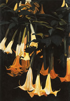 Daturas verticales, 2002, oil on canvas 64.6 x 44.9 in