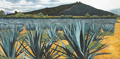 Agaves tequileros, 2002, oil on canvas 33.9 x 67.7 in
