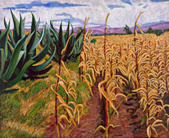 Milpas secas con magueyes, 2010, oil on canvas 31.8 X 39.3 in
